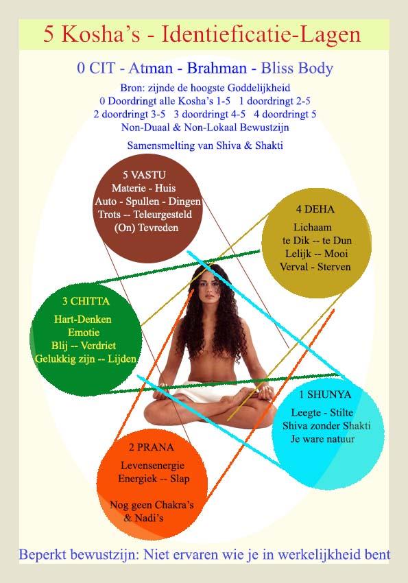 5 Koshas - Bewustzijnslagen - Niveau's zijn schematisch voorgesteld als bollen