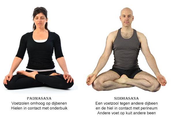 Zit Asana's - Padmasana & Siddhasana