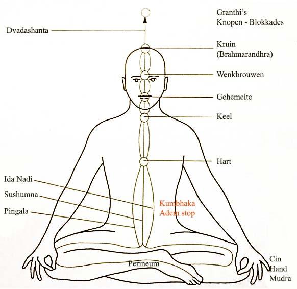 Shiva-Shakti afbeeldingen waarbij zij in één lichaam vertegenwoordigd zijn