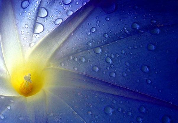 Ishwara - Ishvara - Inner-light - Oorspronkelijke Tantra - Tantrik Yoga brengt verlichting