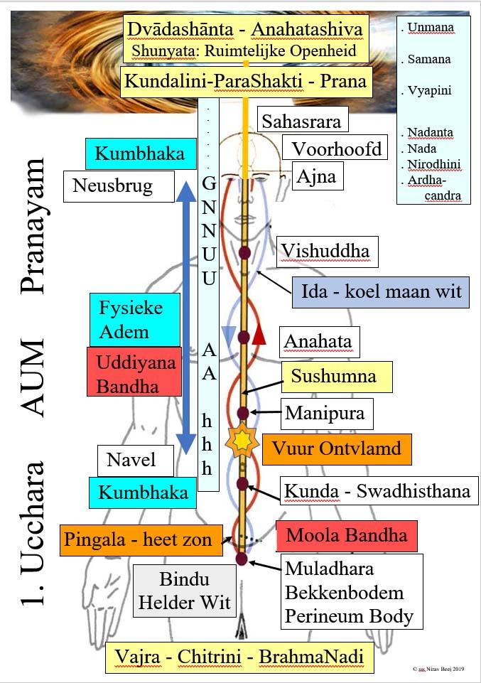 Schema van de Ucchara oefening met Chakra's - Nadi's - Mantra's