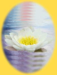 Lakshmi, Indiase Liefdes Godin, welke door de seksuele inspanningen het universum voortbracht