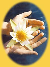 Tantra Lotus bloem in handen - Regenboog Healing bij de TantraTempel